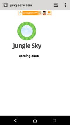 暇CH JungleSky, Inc.のホームページ